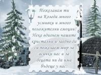 Пожелавам ти на Коледа много усмивки и много положителни емоции! Нека вдигнем чашите кристални и заедно да си пожелаем мир за всички нас и за децата ни да има бъдеще у нас!