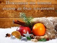 Пожелавам ти новата година да бъде плодовита