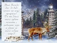 Нека Коледа днес да бъде начало на нещо прекрасно! Да ти донесе много хубави моменти с любимите хора и здраве за много години напред!