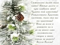 Снежинките валят тихо навън! Някъде далече се чува камбанен звън! Чудото той известява! Рождеството Христово настъпва, тихо към нас то пристъпва! Нека да влезе в домовете ни и да ни донесе само положителни емоции и много поводи за радост! Весела Коледа!
