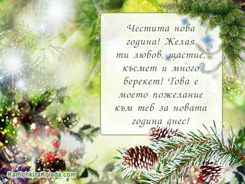 Честита нова година! Желая ти любов, щастие, късмет и много берекет! Това е моето пожелание към теб за новата година днес!