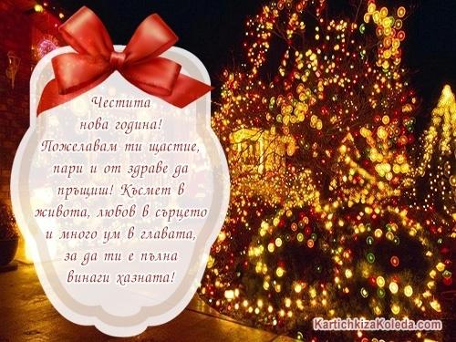 Честита нова година! Пожелавам ти щастие, пари и от здраве да пръщиш! Късмет в живота, любов в сърцето и много ум в главата, за да ти е пълна винаги хазната!