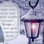Снежинки падат, огъня пращи, чаши звънят, усмивки блестят. Коледа е, много здраве и щастие ти желая!