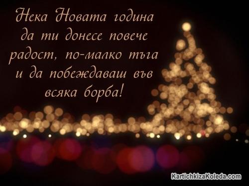 Нека Новата година да ти донесе повече радост, по-малко тъга и да побеждаваш във всяка борба!