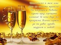 Шампанско и мезе има днес на нашата трапеза! Да посрещнем Новата година пред горящата камина! И нека бъде тя прекрасна, всичко нужно да ни дава: здраве, мъдрост и любов!