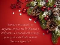 Винаги помагай на хората около теб! Живей в доброта и човечност и нека успеха ти да бъде вечен! Весела Коледа!