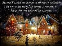Весела Коледа ти желая и много се надявам да получиш това, за което мечтаеш и всеки ден от радост да плачеш!