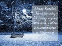 Нека Коледа ти донесе повече топлина, любов в семейството и желаният подарък! Весела Коледа!