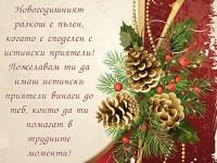 Новогодишният разкош е пълен, когато е споделен с истински приятели! Пожелавам ти да имаш истински приятели винаги до теб, които да ти помагат в трудните моменти!