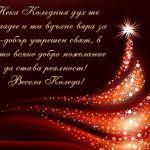 Нека Коледния дух те завладее и ти вдъхне вяра за по-добър утрешен свят, в който всяко добро пожелание да става реалност! Весела Коледа!