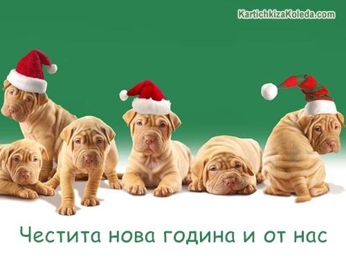 Честита нова година и от нас