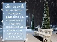 Сняг се сипе на парцали, Коледа е, радвайте се и нека всяка паднала снежинка да сбъдне по една мечта голяма!