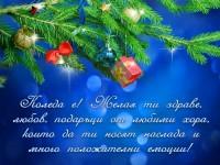 Коледа е! Желая ти здраве, любов, подаръци от любими хора, които да ти носят наслада и много положителни емоции!