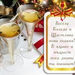 Весела Коледа и Щастлива нова година! В здраве и мъдрост нека дните ти минават!