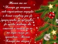 Желая ти на Коледа да получиш най-страхотния подарък и всеки следващ ден да продължава да те радва, да прави живота ти смислен и никога да не те кара сълзи да проливаш. Весела Коледа ти желая!