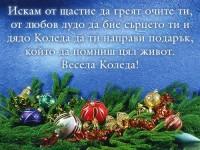 Искам от щастие да греят очите ти, от любов лудо да бие сърцето ти и дядо Коледа да ти направи подарък, който да помниш цял живот. Весела Коледа!