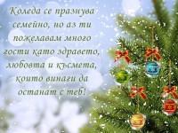 Коледа се празнува семейно, но аз ти пожелавам много гости като здравето, любовта и късмета, които винаги да останат с теб!