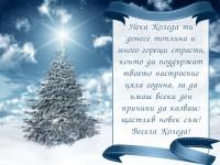 Нека Коледа ти донесе топлина и много горещи страсти, които да поддържат твоето настроение цяла година, за да имаш всеки ден причини да казваш: щастлив човек съм! Весела Коледа!