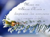 Желая ти Весела Коледа и безгрижни дни изпълнени с емоции добри!