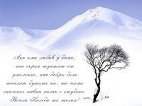 Ако има любов у дома, ако сърца туптят от умиление, ако добри дела топлят душите ни, то няма значение навън колко е студено. Весела Коледа ти желая!