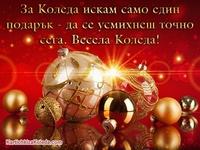 За Коледа искам само един подарък - да се усмихнеш точно сега. Весела Коледа!