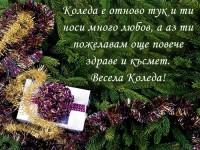 Коледа е отново тук и ти носи много любов, а аз ти пожелавам още повече здраве и късмет. Весела Коледа!