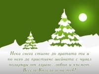 Нека снега стигне до вратата ти и по него да пристигне шейната с чувал подаръци от здраве, любов и късмет. Весела Коледа и на теб!
