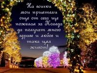 На всички мои приятели още от сега ще пожелая за Коледа да получат много здраве и любов и така цял живот!