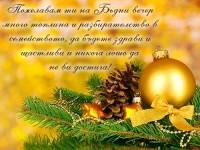 Пожелавам ти на Бъдни вечер много топлина и разбирателство в семейството, да бъдете здрави и щастливи и никога лошо да не ви достига!
