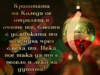 Красотата на Коледа се отразява в очите ти, блести с усмивката ти и се чува чрез смеха ти. Нека все така да ти е весело и леко на душата!