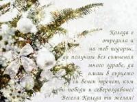Коледа е отредила и на теб подарък, да получиш без съмнения много здраве, да имаш в сърцето си вечен трепет, към нови победи и себераздаване! Весела Коледа ти желая!