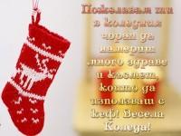 Пожелавам ти в коледния чорап да намериш много здраве и късмет, които да използваш с кеф! Весела Коледа!