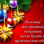 На всички мои приятели пожелавам весела Коледа и щастлива нова година!