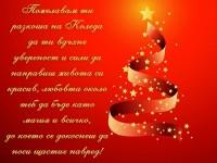Пожелавам ти разкоша на Коледа да ти вдъхне увереност и сили да направиш живота си красив, любовта около теб да бъде като магия и всичко, до което се докоснеш да носи щастие навред!