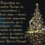 Пожелавам ти вълшебна Коледа със семейството и близките хора, с които да споделите радостта от празника, да се заредите с повече енергия за цялата година и да порасне още повече вярата ви в доброто! Весела Коледа!