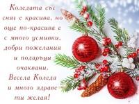 Коледата със сняг е красива, но още по-красива е с много усмивки, добри пожелания и подаръци очаквани. Весела Коледа и много здраве ти желая!