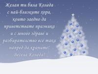 Желая ти бяла Коледа с най-близките хора, които заедно да приветствате празника и с много здраве и разбирателство все така напред да крачите! Весела Коледа!