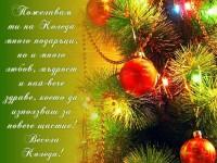 Пожелавам ти на Коледа много подаръци, но и много любов, мъдрост и най-вече здраве, което да използваш за повече щастие! Весела Коледа!