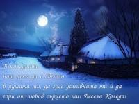 В коледната нощ нека да е светло в душата ти, да грее усмивката ти и да гори от любов сърцето ти! Весела Коледа!