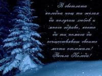 В светлата коледна нощ ти желая да получиш любов и много здраве, което да ти помага да осъществяваш своите мечти отлежали! Весела Коледа!