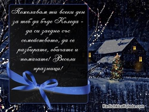 Пожелавам ти всеки ден за теб да бъде Коледа - да сте заедно със семейството, да се разбирате, обичате и помагате! Весели празници!