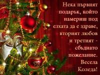 Нека първият подарък, който намериш под елхата да е здраве, вторият любов и третият - сбъднато пожелание. Весела Коледа!