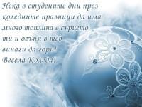 Нека в студените дни през коледните празници да има много топлина в сърцето ти и огъня в теб винаги да гори! Весела Коледа!