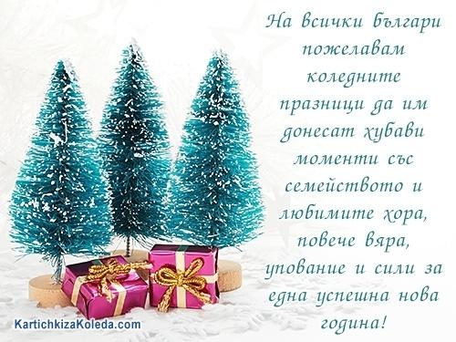 На всички българи пожелавам коледните празници да им донесат хубави моменти със семейството и любимите хора, повече вяра, упование и сили за една успешна нова година!