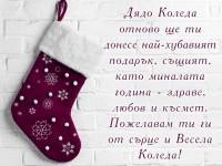 Дядо Коледа отново ще ти донесе най-хубавият подарък, същият, като миналата година - здраве, любов и късмет. Пожелавам ти ги от сърце и Весела Коледа!