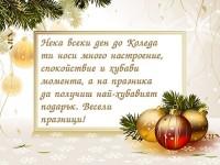 Нека всеки ден до Коледа ти носи много настроение, спокойствие и хубави момента, а на празника да получиш най-хубавият подарък. Весели празници!