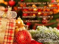 Нека цветовете на Коледа ти донесат всичко желано: червеното - страст, зеленото - свежест и жълтото - сила!