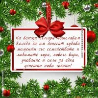 Пожелания за Коледа към всички българи