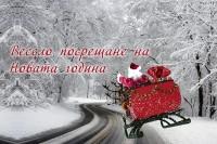 Весело посрещане на Новата година